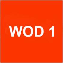 Wod 1